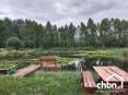 Staw, jezioro, Bory Tucholskie – wykorzystaj potencjał !!